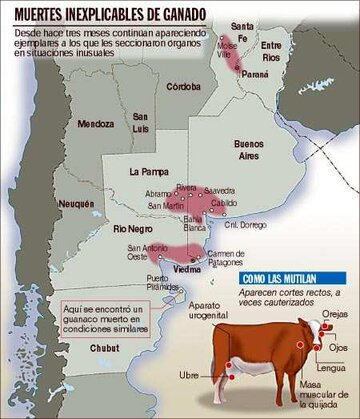 Argentina_cattle_map.jpg