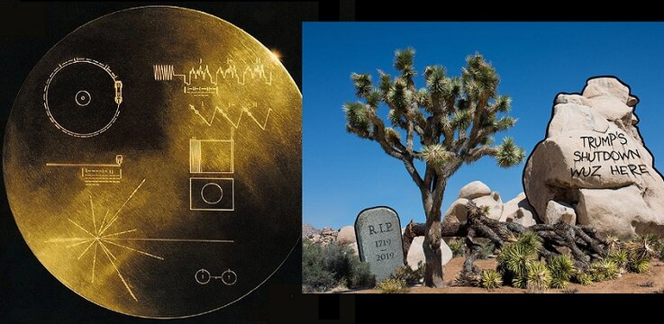 pioneer plaque joshua tree.jpg